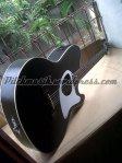 acoustic guitar talman pitchgitar (17)